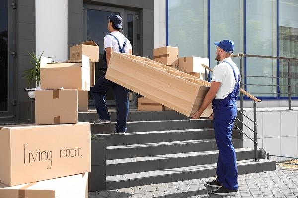 Male local movers carrying shelving unit into new house, apartment moving
